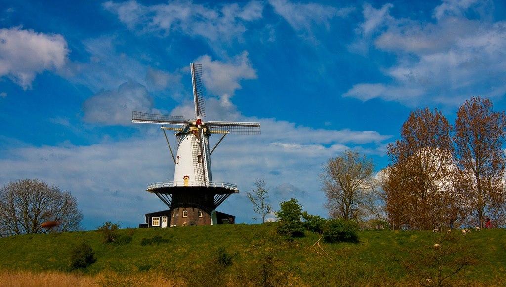 Windmill 'De Koe' in Veere (Zeeland)