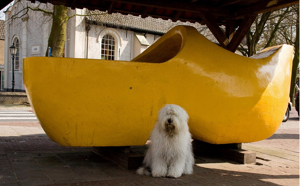 The Worlds Largest Wooden Shoe Has Gone Missing Heavenly Holland