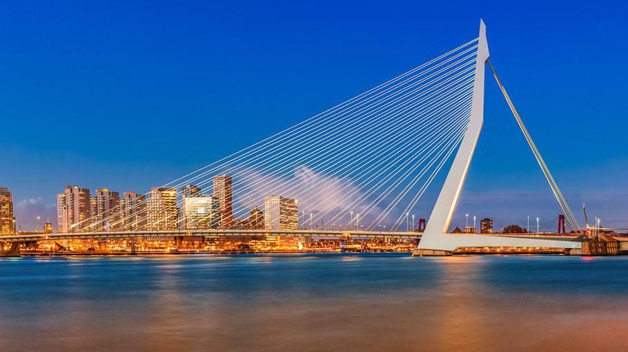 Rotterdam12.jpg