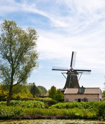 Windmill 'De Herder' in Leiden (South Holland)