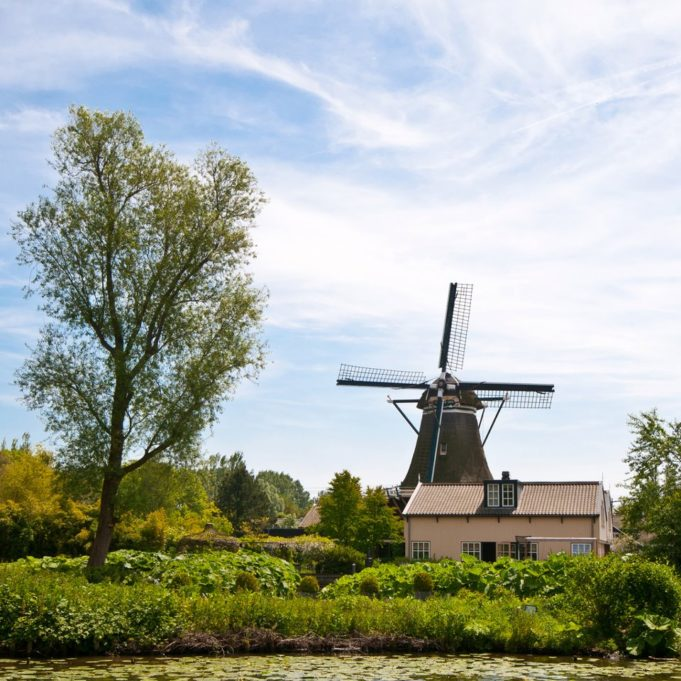 Windmill 'De Herder' in Leiden (South Holland)