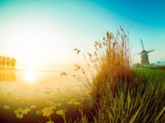 Windmill 'De Driegang' in Leidschendam (South Holland)