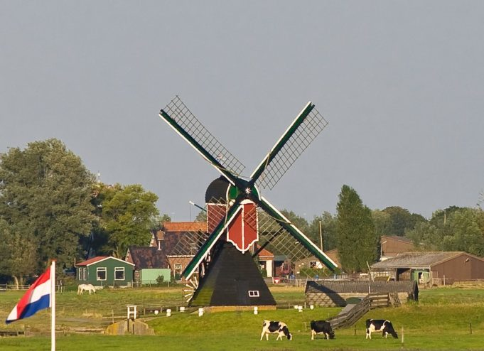 Windmill 'Zweilandermolen' in Warmond (South Holland)