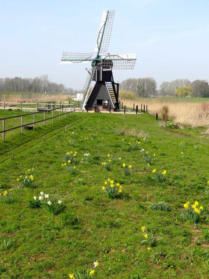 Windmill 'Follega' in Laag-Keppel (Gelderland)