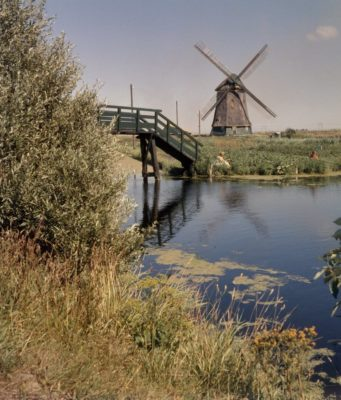Windmill 'Twuyvermolen' in Sint Pancras (North Holland)