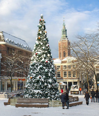 Did you know that the odds of having a white Christmas in the Netherlands is only 7% every year? A white Christmas has only occured 8 times in the last 116 years: in 1906, 1938, 1940, 1950, 1964, 1981, 2009 and 2010.