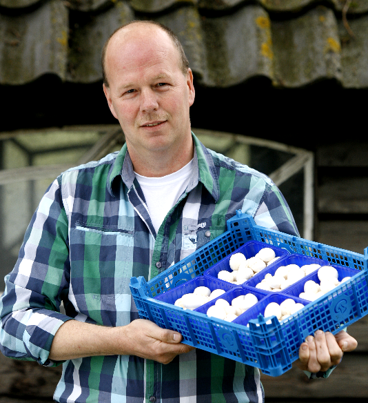 Did you know that the Netherlands is one of the world's largest exporters of mushrooms?