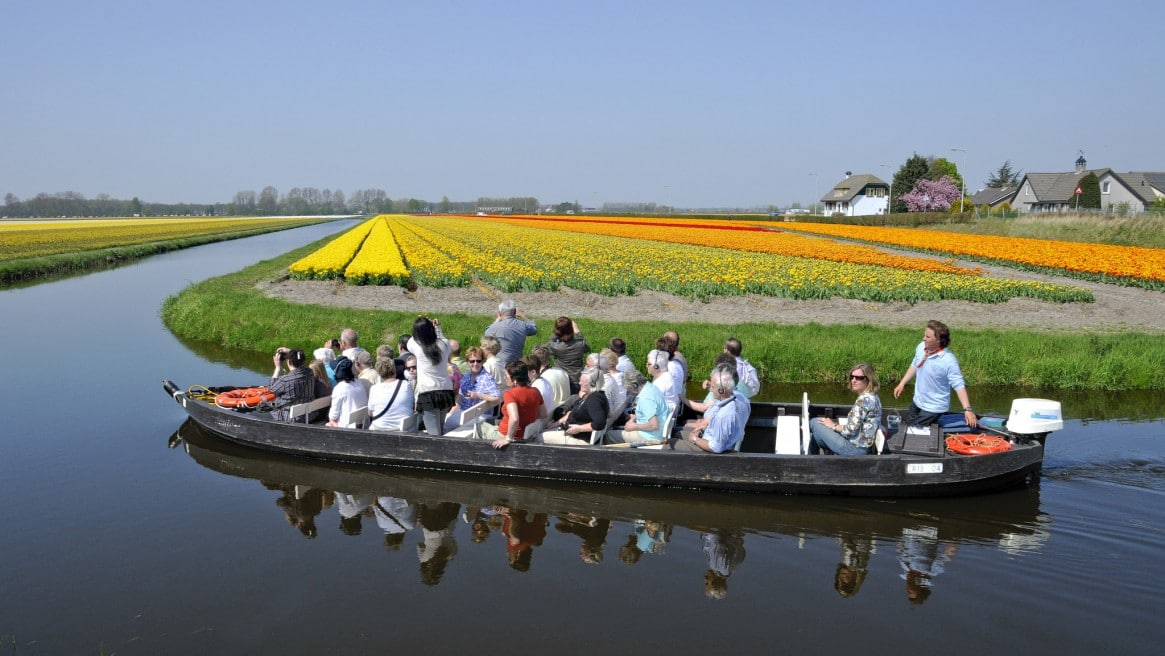 Did you know the world's largest flower garden Keukenhof is only open two months per year?