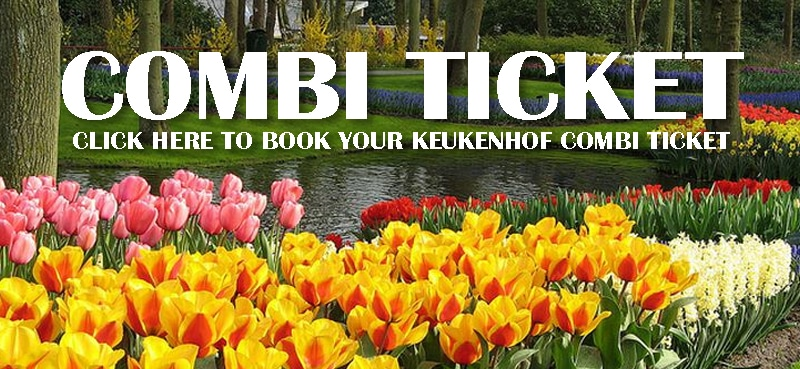 Keukenhof combi ticket: park entrance plus bus transfer