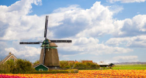Did you know that hundreds of the Dutch windmills and watermills open their doors to the public on the National Mill Days this Saturday 12 May and Sunday 13 May? Go on a tour with the miller and enjoy extra activities such as fairs and live demos.